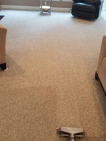 carpet cleaning procare