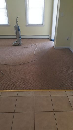 Carpet Cleaning in Taunton, MA (1)