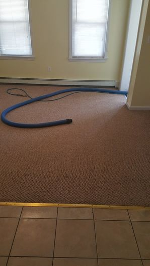 Carpet Cleaning in Taunton, MA (2)