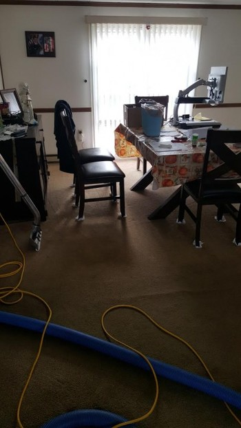 Carpet Cleaning in Plymouth, MA