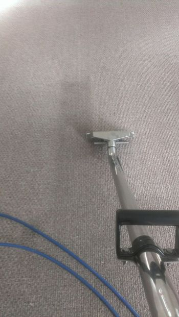 Carpet Cleaning in Taunton, MA