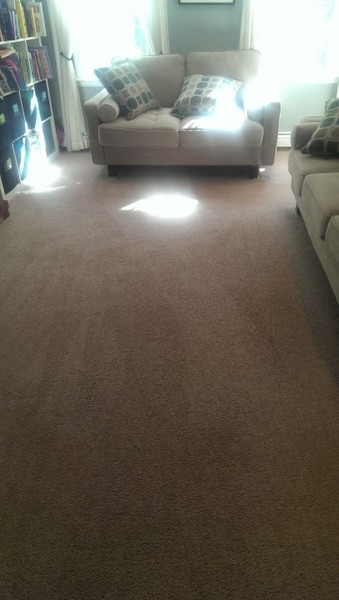 Living room carpet cleaned in Mansfield, Ma