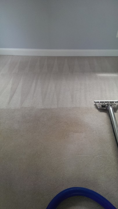 Carpet cleaning in Mansfield, Ma