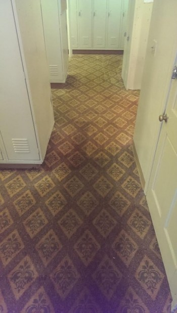 Carpet cleaning in Norton, MA